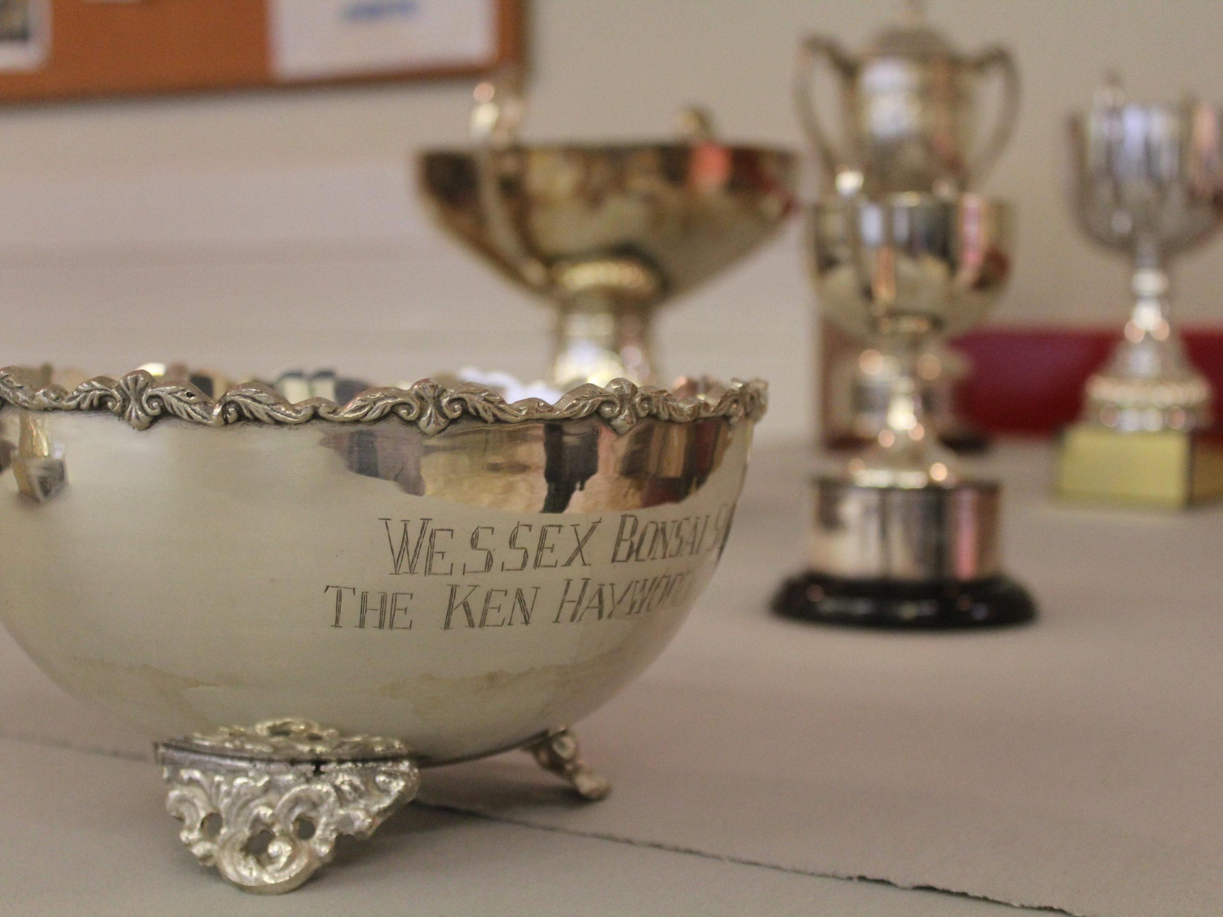 Wessex Bonsai Open Competition Trophy